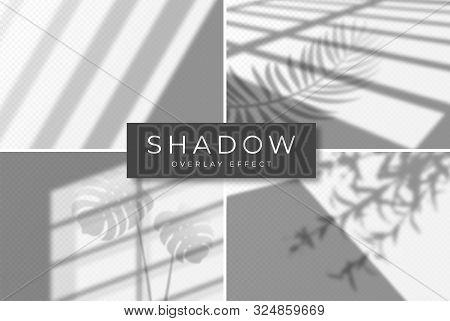 Set Of Shadow Overlay Effects. Vector Shadow And Light Overlay Effect, Natural Lighting Scene. Mocku