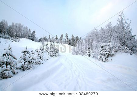 Winter Finland landscape