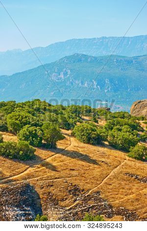 Small trees on rock in Meteora, Kalabaka, Thessaly, Greece - Greek landscape