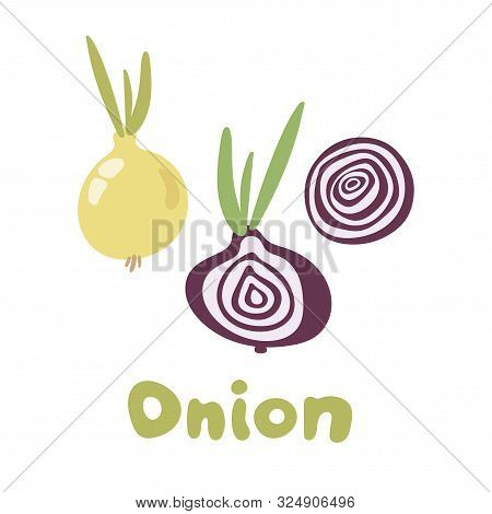 Fresh Vegetable Onion Isolated Icon. Onion For Farm Market, Vegetarian Salad Recipe Design. Vector I