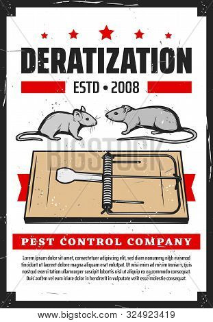 Rats Pest Control, Deratization And Rodent Extermination Service. Vector Domestic And Office Rats Ex