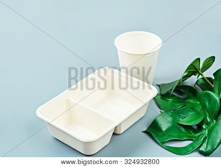 Unbleached Plant Fiber Food Box And Paper Cup With Green Leaves. Natural Fiber Eco Food And Drink Pa