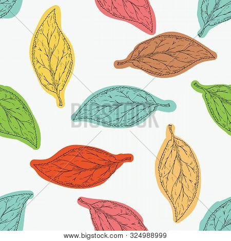 Seamless Pattern With Beech Leaves On White Background. Black Outline And Color Spots