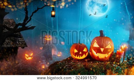 Spooky halloween pumpkins in dark mistery forest. Scary halloween background with free space for text.