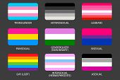 Set of LGBT Pride Flags. Gays, lesbians, asexuals, transsexuals, hermaphrodites, transgender, pansexual, heterosexual, intersexual people. Sexual identity pride flags. Against discrimination Official symbols of the community poster