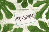 Text sign showing Iso Norm. Conceptual photo An accepted standard or a way of doing things most showing agreed. poster