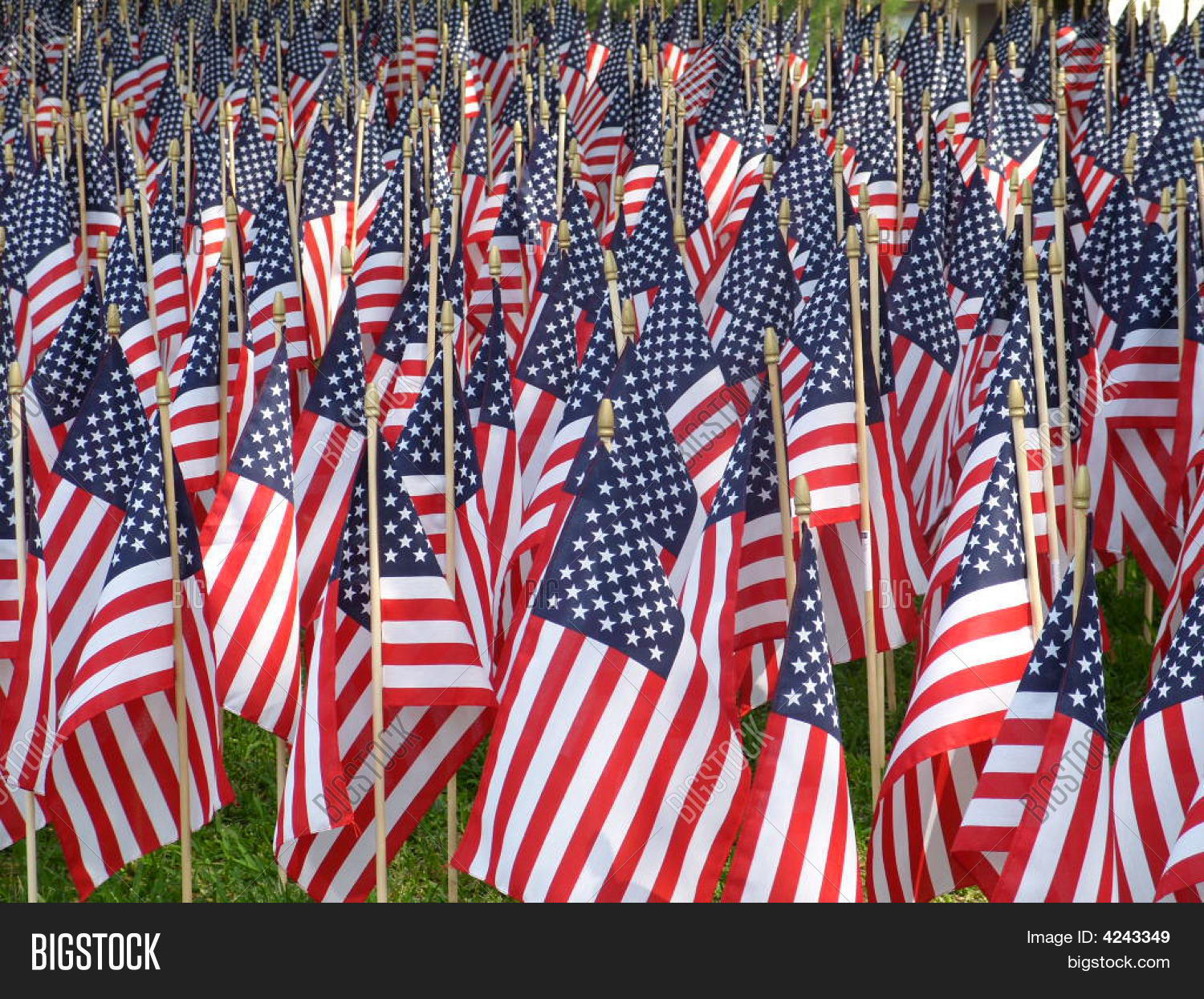 Field Flags Image & Photo (Free Trial) | Bigstock