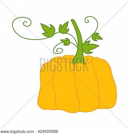 Pumpkin - Colorful Doodle Style Illustration. Can Be Used As Icon Or Sign. Halloween And Thanksgivin