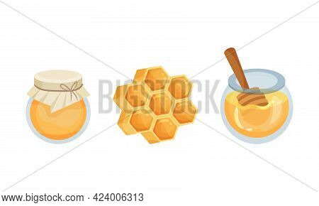 Glass Jar With Honey And Honeycomb With Fragrant Sticky Nectar Vector Set