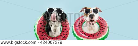 Banner Summer Pets. Funny Two Dogs Going On Vacations Licking Its Lips Inside Of A Watermelon Inflat