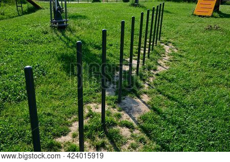 Park For Dogs. Training Ground For Dogs. Tunnels And Beams, Obstacle Courses Of Metal And Plastic. D