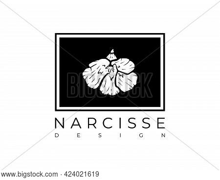 Frame With A Print Of A Daffodil Or Narcissus Flower. Vector Illustration.