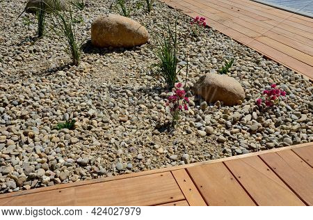 Ornamental Flowerbed With Perennials And Stones Made Of Gray Granite, Mulched Pebbles In The City Ga