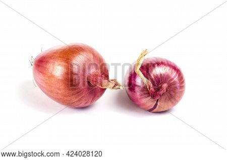 Two Ripe Raw Unpeeled Onions On A White Background. Italian Onions Ramata Di Milano. Root Vegetables