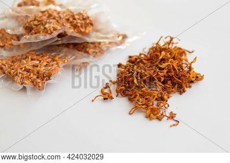Dry Fresh Cordyceps. Militaris Mushroom. Militaris Mushroom. Using Cordycepin. Fungi For Human Healt