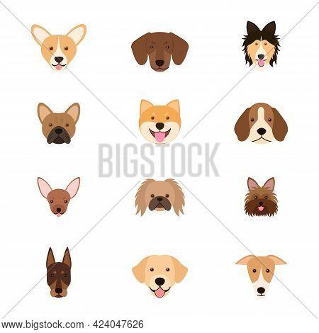 Different Breeds Of Dog. Set Of Dog Heads, Vector Illustration