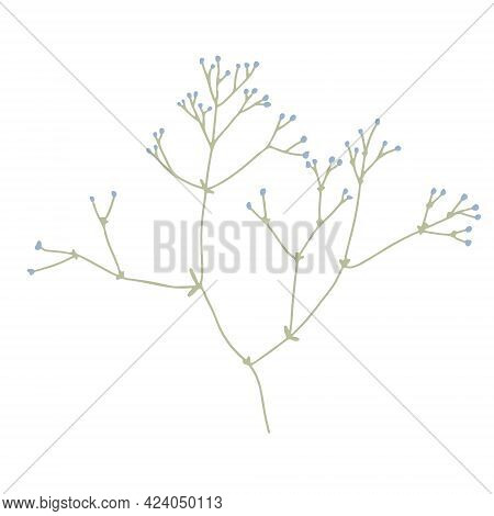 Thin Blooming Branch. Hand Drawn Vector Illustration Isolated On White. Wildflower Or Meadow Plant.