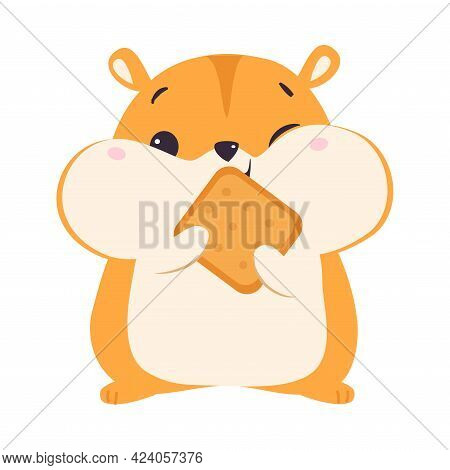 Cute Hamster Eating Cookie, Adorable Funny Pet Animal Character Cartoon Vector Illustration