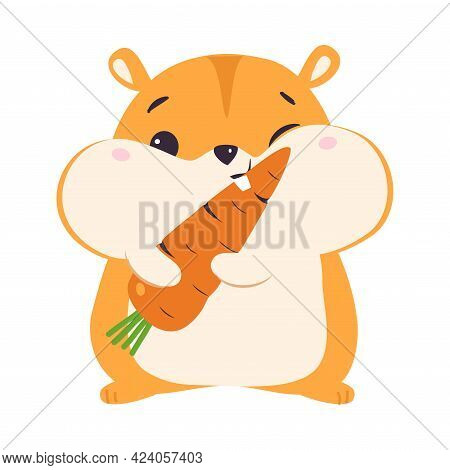 Cute Hamster Eating Carrot, Adorable Funny Pet Animal Character Cartoon Vector Illustration