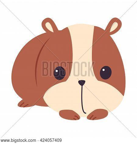 Cute Brown Hamster, Adorable Pet Animal Character Cartoon Vector Illustration