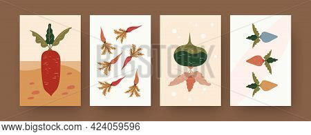 Set Of Contemporary Art Posters With Carrots And Beetroot. Root Vegetables In Soil Cartoon Vector Il