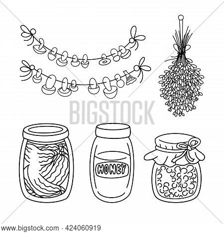 Vintage home pantry Food Supplies vector set. Homemade ingredients, Preserves, glass Jar, canned jam, honey and pickles, dried lavender and mushrooms on the rope. Elements isolated, coloring page