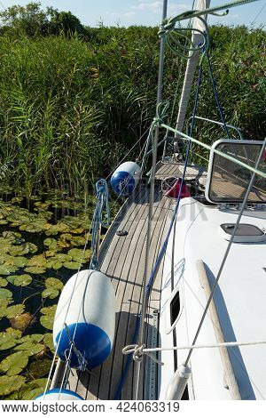 View Of The Reeds From The Side Of The Yacht. Sailboat On The River With The Riverbanks Overgrown Wi