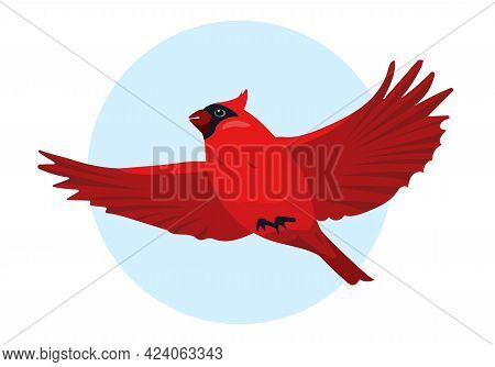Red Cardinal Bird Flying In Sky. Cute Small Bright Bird Icon. Vector Illustration For Ornithology Or
