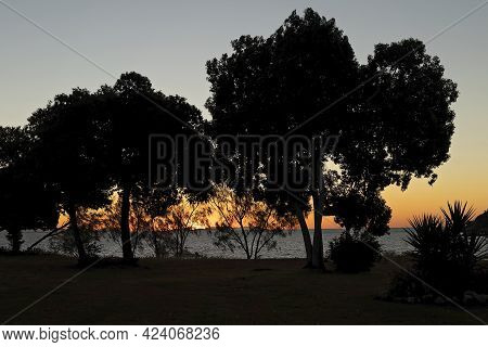 The Orange Glow Of Sunset Over The Water Seen Through Trees On The Beachfront