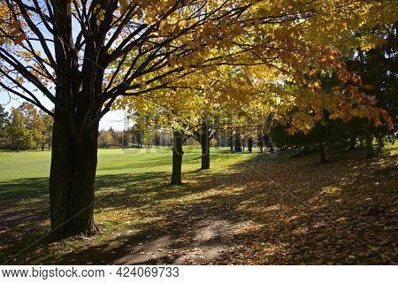 The Footpath Of The Golf Course In Autumn