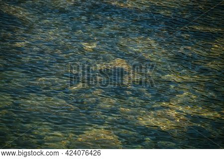 Meditative Ripple Of Mountain Lake. Beautiful Relaxing Background Of Blue Green Transparent Water Of