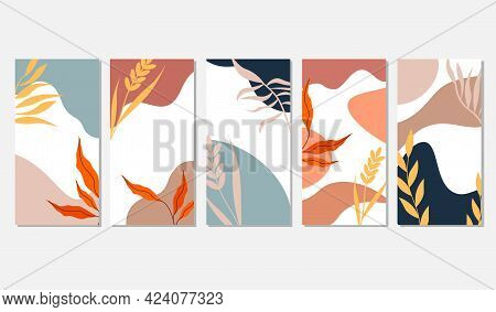 Set Of Patterns With Abstract Background And Leaves. Spots And Leaves On A White Background. Vector