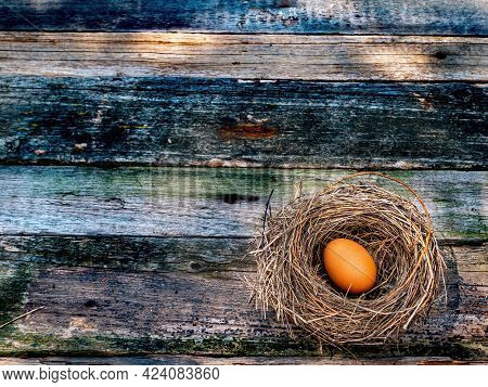 Chicken Eggs In A Bird's Nest On A Wooden Table. Egg. Easter Eggs. Bird Egg In The Nest. Easter Trad