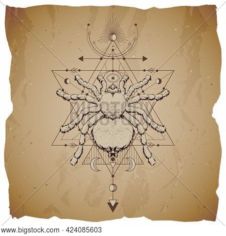 Vector Illustration With Hand Drawn Insect And Sacred Geometric Symbol On Vintage Paper Background W