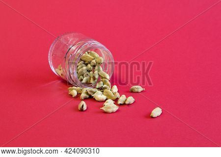 Fresh Tasty Spices, Soft Green Cardamon Top View Close Up On Bright Red Background