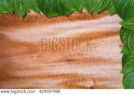 Fresh Green Leaf Frame On Empty Wooden Plank Background Use For Place Text And Other On Top-view