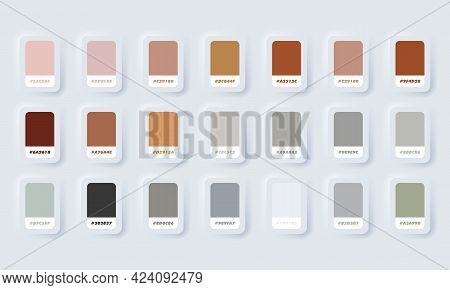 Colour Palette. Vector. Catalog Samples Brown And Grey In Rgb Hex. Color Catalog. Neumorphic Ui Ux W