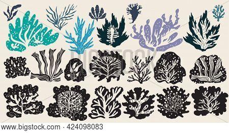 Underwater Marine Flora Set Of Seaweeds, Planting, Marine Algae And Ocean Corals Silhouettes. Vector