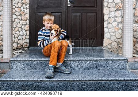 Pet Love. Kids And Dogs. Little Boy Hugging Beagle Puppy At Home. Cute Little Beagle Puppy And Kid B
