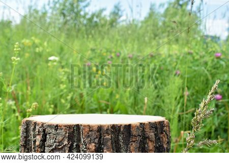 A Minimalistic Wooden Stage Set Against The Backdrop Of A Clearing. Catwalk For The Presentation Of