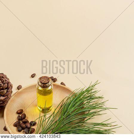Essential Cedar Oil With Cedar Branch, Cone, Nuts On Beige Backdrop With Copy Space.