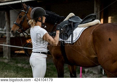 Young Woman Is Going For Ride On Summer Evening . She Is Dressed In Sports Clothes For Horse Ride.co