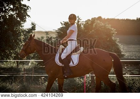 Horse Riding Training In Fresh Air On Summer Evening.beautiful Young Woman In White Sports Uniform.