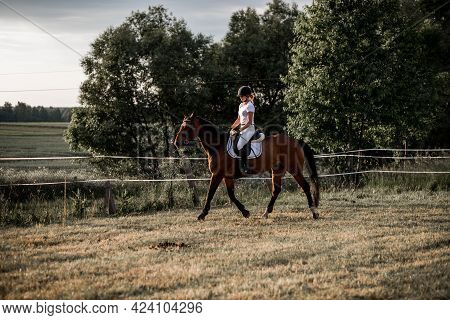 Horse Riding Training. Preparation For Competitions.beautiful Summer Evening. Active Lifestyle. Spor