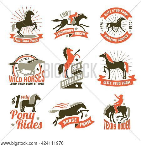 Elite Stud Farms For Horses Breeding And Jockey Clubs Historical Racing Three Colored Emblems Collec