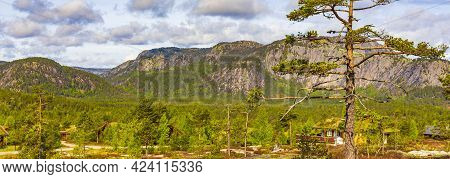 Panorama With Fir Trees And Mountains Nature Landscape Nissedal Norway.