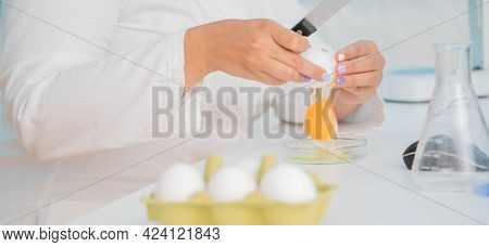 Eggs in quality inspection lab