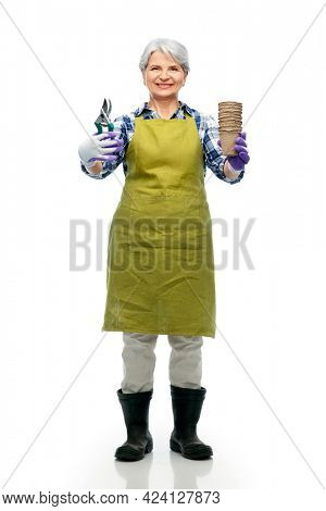 gardening, farming and old people concept - portrait of smiling senior woman in green garden apron and gloves with pruner and flower pots over white background