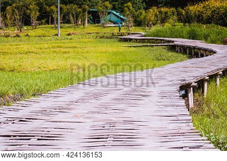 Curve Bamboo Bridge. Curved Wooden Bridge At Park In Paddy Field