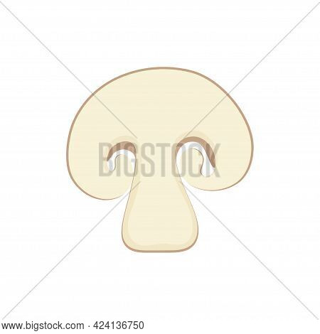 Fresh Champignon Mushroom, Vector Illustration, Piece Of Champignon Isolated On White Background
